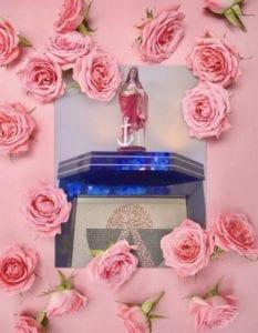 SF Em Rosas